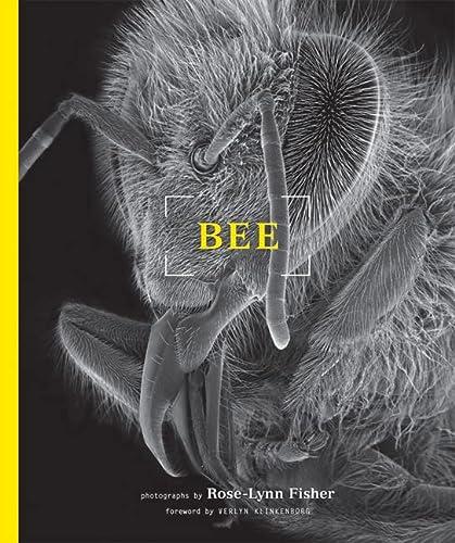 9781616890766: Bee