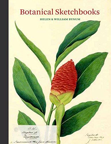 9781616895884: Botanical Sketchbooks