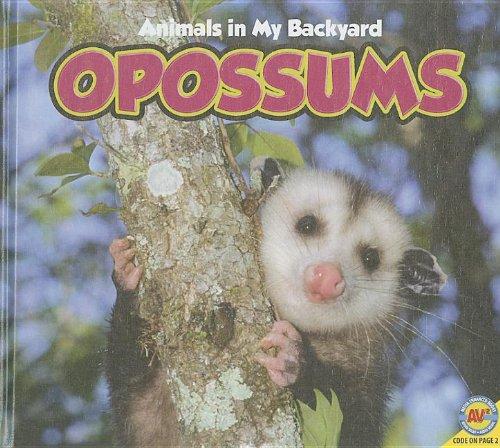 Opossums [With Web Access] (Animals in My Backyard): McGill, Jordan