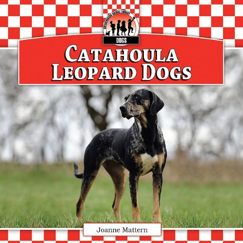 9781617149900: Catahoula Leopard Dogs (Checkerboard Animal Library: Dogs)
