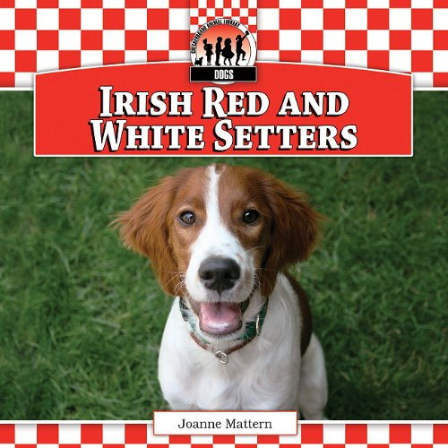9781617149917: Irish Red and White Setters (Checkerboard Animal Library: Dogs)