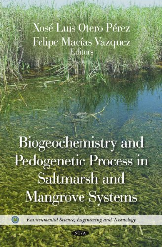 Biogeochemistry and Pedogenetic Process in Saltmarsh and