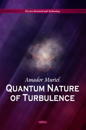 9781617289309: Quantum Nature of Turbulence (Physics Research and Technology)