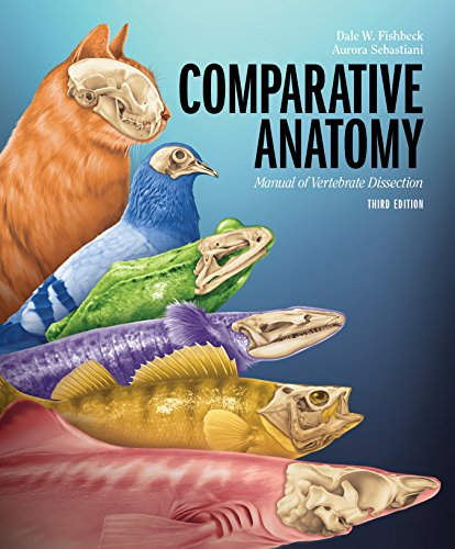 9781617310423: Comparative Anatomy: Manual of Vertebrate Dissection