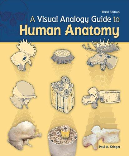 9781617310645: A Visual Analogy Guide to Human Anatomy