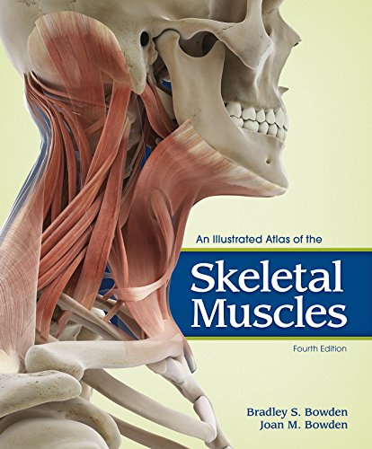 9781617311727: An Illustrated Atlas of the Skeletal Muscles
