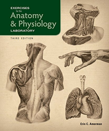 physiology lab 3 activity 2 (2) cellular level (3) tissue level (4) introduction to anatomyand physiology chapter_1_lab_keyqxp author: stephen.
