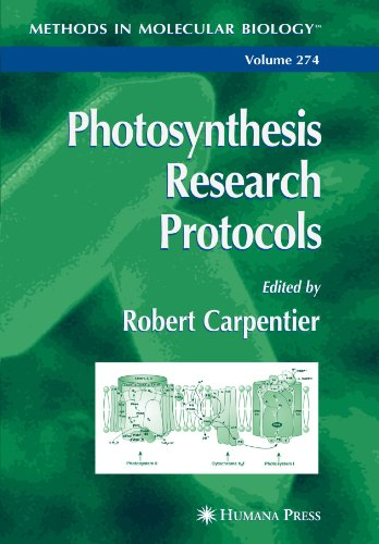 9781617374401: Photosynthesis Research Protocols (Methods in Molecular Biology)