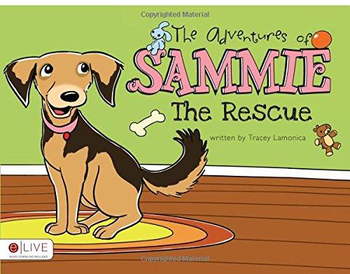 9781617395208: The Adventures of Sammie