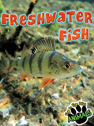 Freshwater Fish (Eye to Eye With Animals): Tom Greve