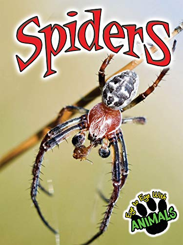 Spiders (Eye to Eye with Animals): McCleese, Don