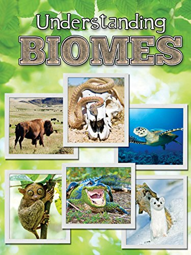 9781617417832: Understanding Biomes (Let's Explore Science)