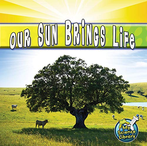9781617419256: Our Sun Brings Life (My Science Library: Level D)