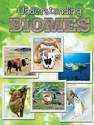 9781617419850: Understanding Biomes (Let's Explore Science)