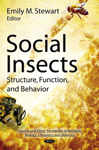 9781617614668: Social Insects: Structure, Function, & Behavior (Insects and Other Terrestrial Arthropods: Biology, Chemistry and Behavior)