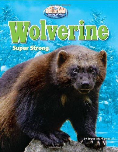 9781617721311: Wolverine: Super Strong (Built for Cold: Arctic Animals)