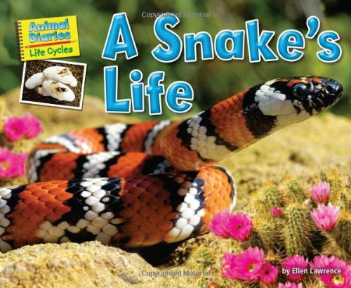 9781617724169: A Snake's Life (Animal Diaries: Life Cycles)
