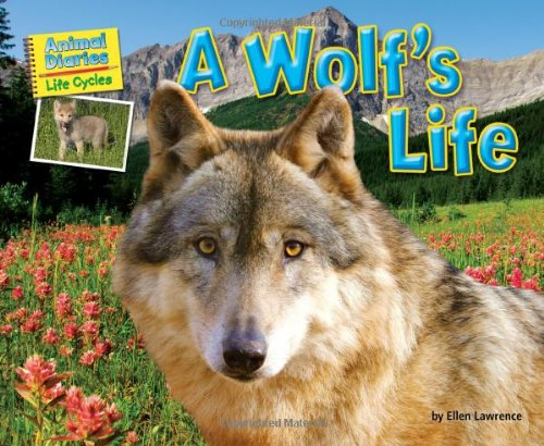 9781617725975: A Wolf's Life (Science Slam: Animal Diaries Life Cycles)