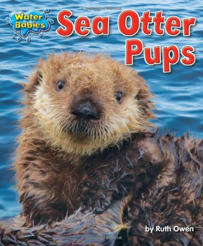 9781617726019: Sea Otter Pups (Water Babies)