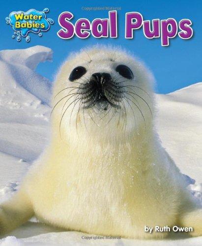 Seal Pups (Water Babies): Owen, Ruth