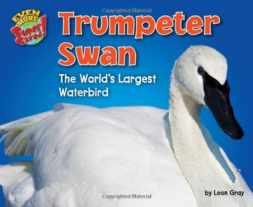 Trumpeter Swan: The World's Largest Waterbird (Library Binding): Leon Gray