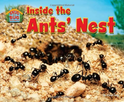 Inside the Ants' Nest (Library Binding): Karen Ang