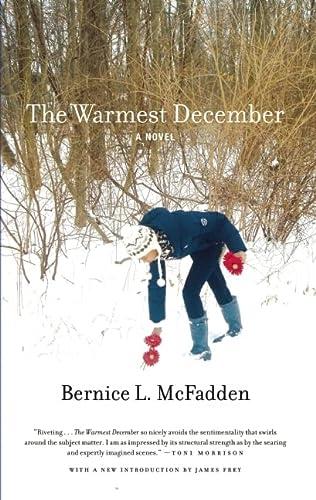 9781617750359: The Warmest December