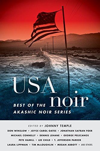9781617751844: USA Noir: Best of the Akashic Noir Series