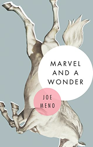 Marvel and A Wonder: Joe Meno