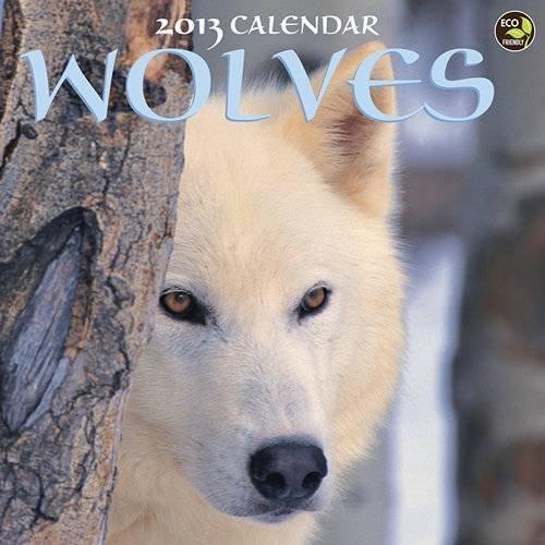 9781617766541: Wolves 2013 Calendar