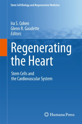 Regenerating the Heart: Stem Cells and the Cardiovascular System (Hardback)