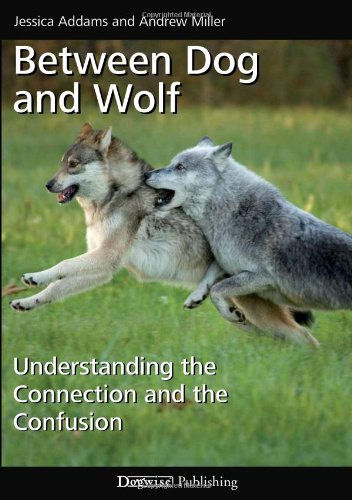 9781617810558: Between Dog and Wolf: Understanding the Connection and the Confusion