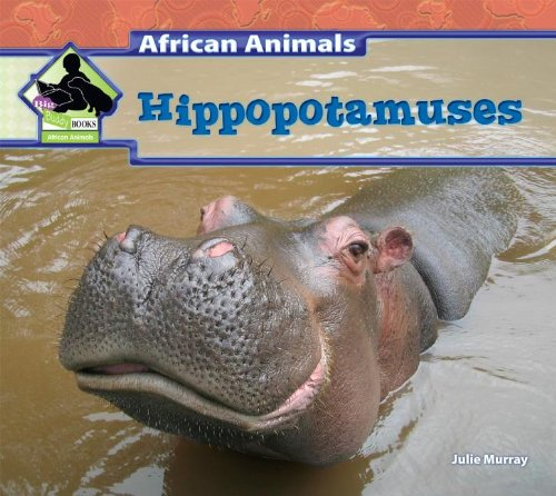 Hippopotamuses: Murray, Julie
