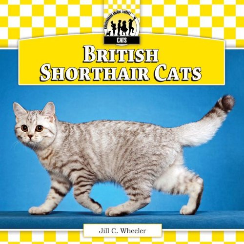 9781617832390: British Shorthair Cats (Checkerboard Animal Library: Cats)
