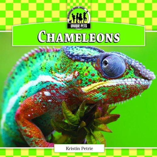 9781617834394: Chameleons (Unique Pets)