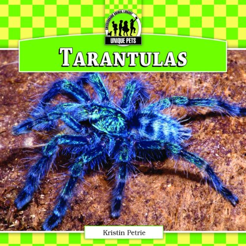 Tarantulas: Kristin Petrie