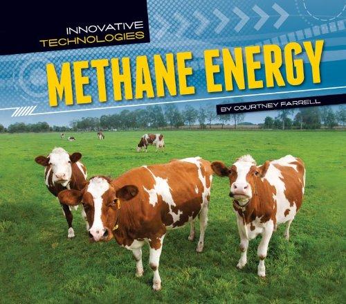9781617834653: Methane Energy (Innovative Technologies)