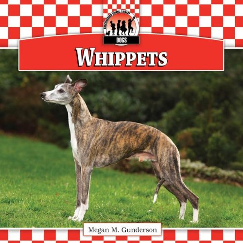 9781617835933: Whippets (Dogs)