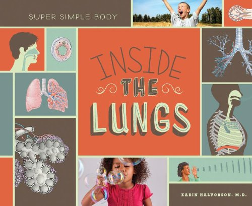 9781617836138: Inside the Lungs (Super Simple Body)