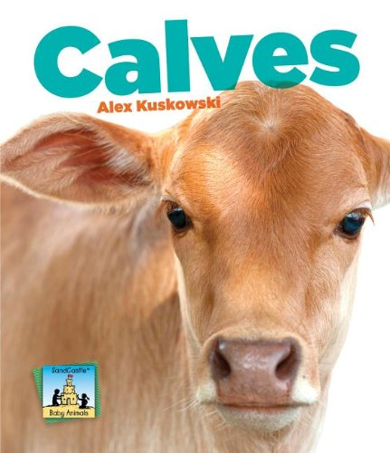 9781617838361: Calves (Baby Animals)