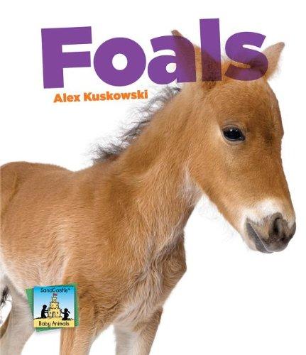 9781617838378: Foals (SandCastle: Baby Animals)