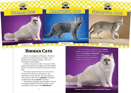 Cats Set 7 (Hardback): Kristin Petrie