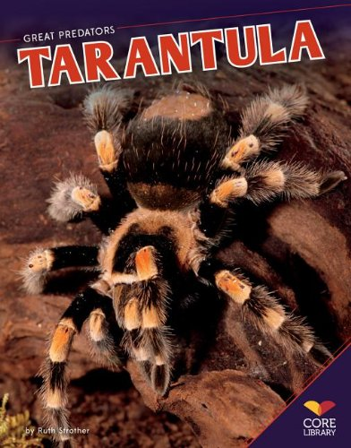 Tarantula (Great Predators): Strother, Ruth