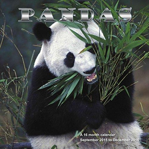 9781617915468: Pandas Calendrier Calendar 2016