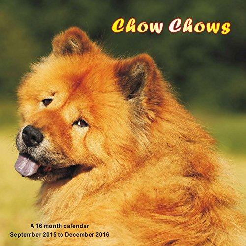 9781617915758: Chow Chows Calendrier Calendar 2016