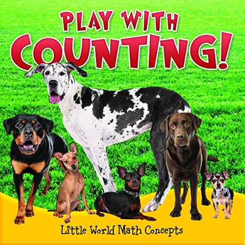 Play with Counting! (Little World Math Concepts): Webb, Barbara L