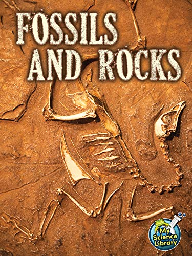 9781618102362: Fossil and Rocks (My Science Library)