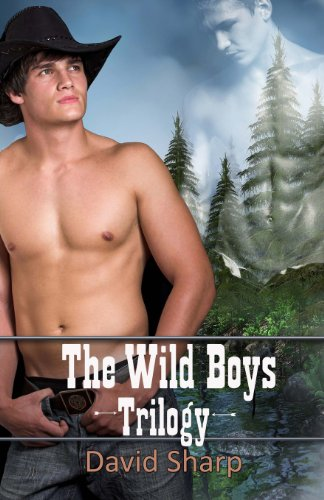 9781618451323: The Wild Boys Trilogy