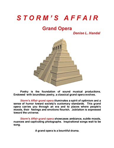 9781618567109: Storm's Affair