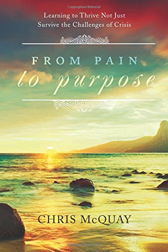 9781618623072: From Pain to Purpose